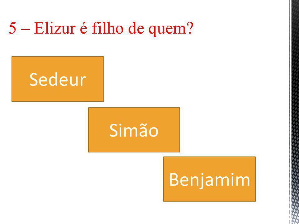 5 – Elizur é filho de quem Sedeur Simão Benjamim