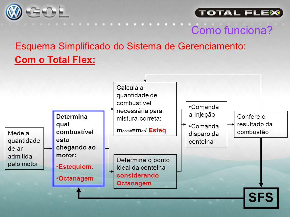 SFS Como funciona Esquema Simplificado do Sistema de Gerenciamento: