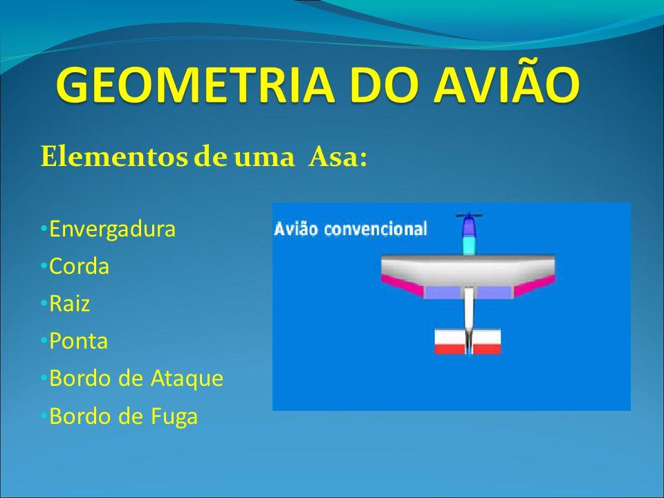 Elementos de uma Asa: Envergadura Corda Raiz Ponta Bordo de Ataque