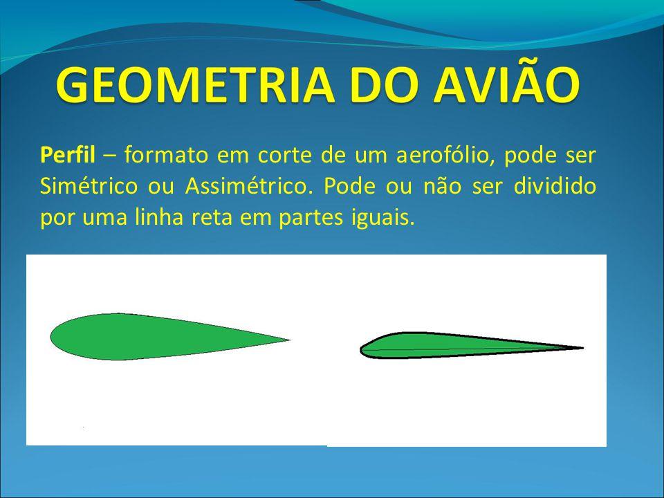 Perfil – formato em corte de um aerofólio, pode ser Simétrico ou Assimétrico.