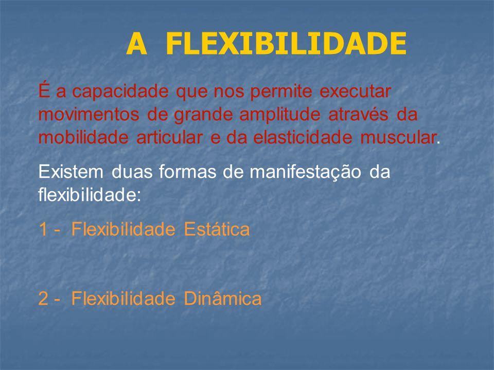 A FLEXIBILIDADE É a capacidade que nos permite executar movimentos de grande amplitude através da mobilidade articular e da elasticidade muscular.