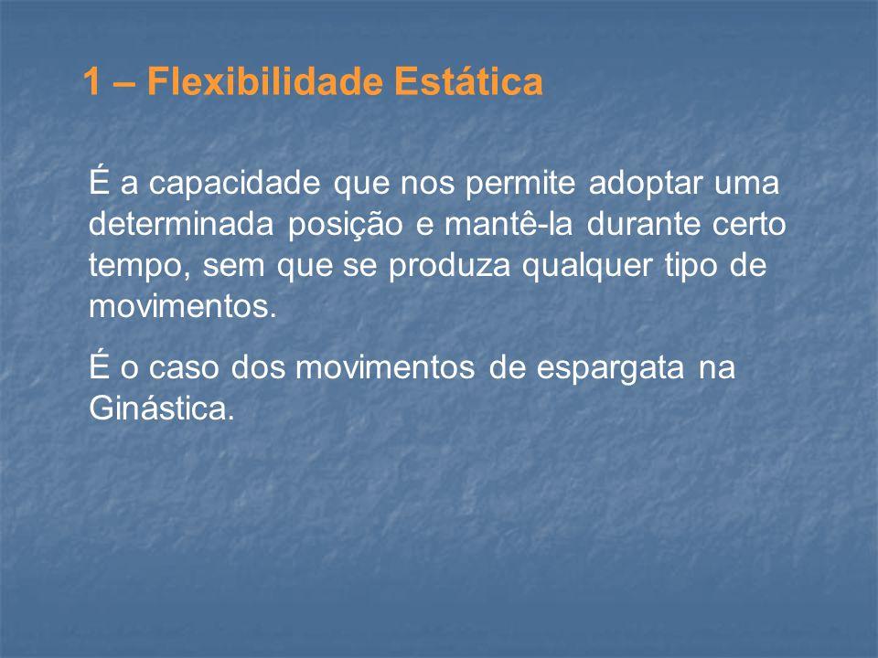 1 – Flexibilidade Estática