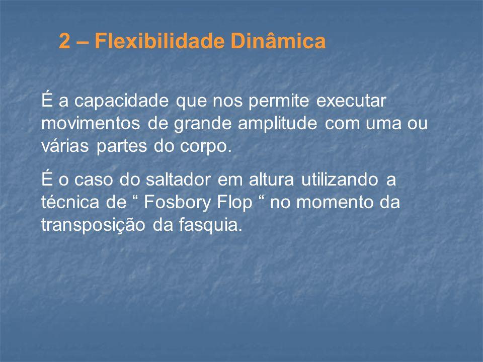 2 – Flexibilidade Dinâmica