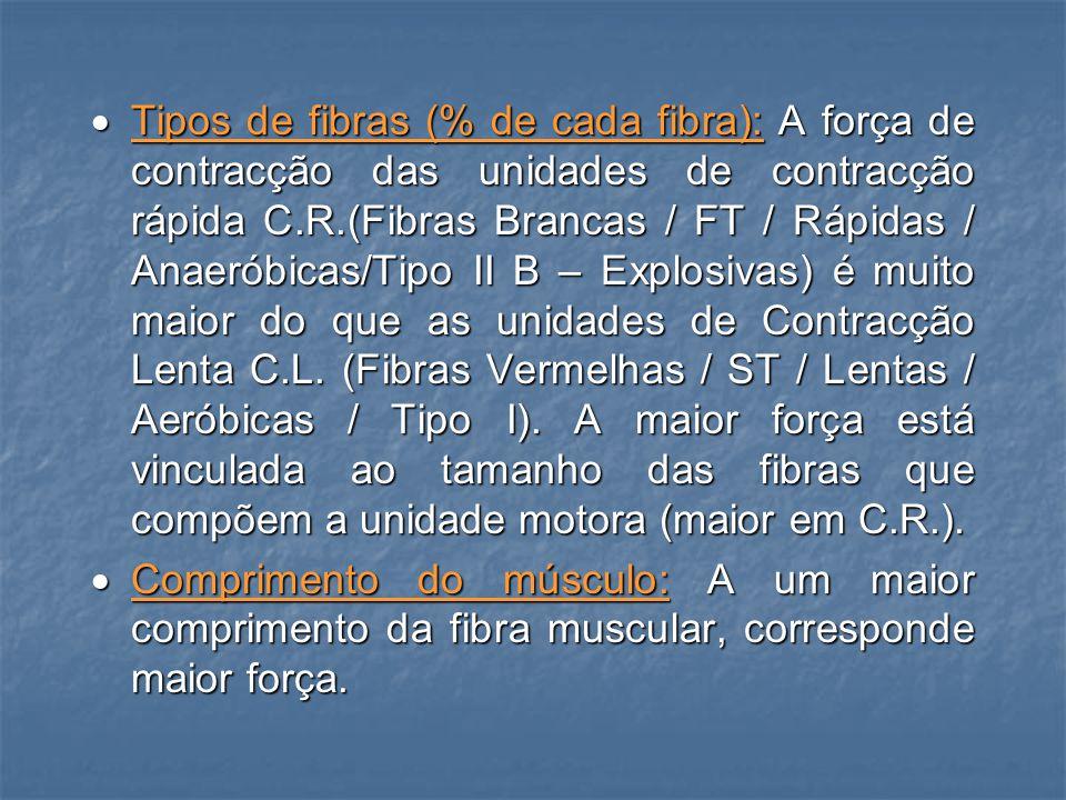 · Tipos de fibras (% de cada fibra): A força de contracção das unidades de contracção rápida C.R.(Fibras Brancas / FT / Rápidas / Anaeróbicas/Tipo II B – Explosivas) é muito maior do que as unidades de Contracção Lenta C.L. (Fibras Vermelhas / ST / Lentas / Aeróbicas / Tipo I). A maior força está vinculada ao tamanho das fibras que compõem a unidade motora (maior em C.R.).