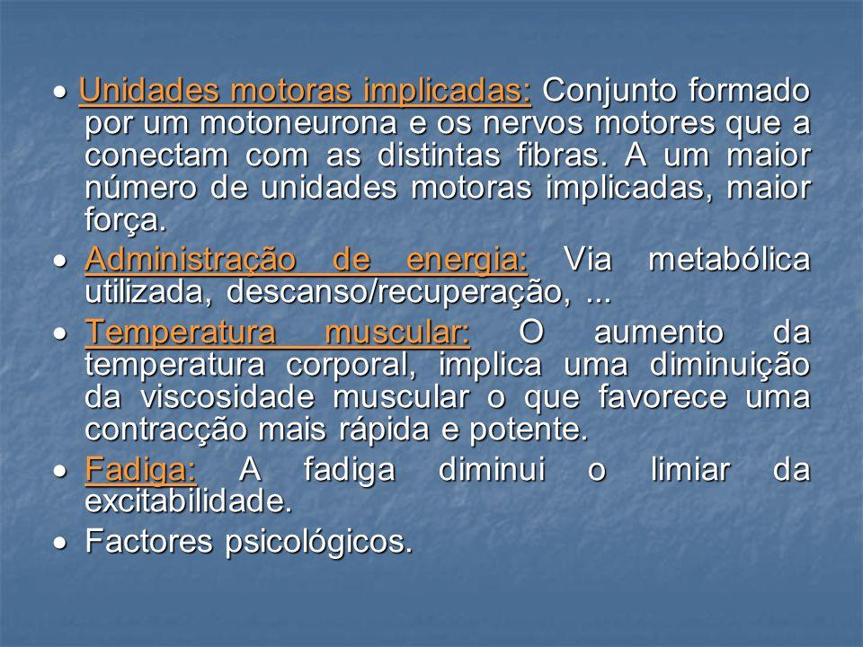 · Unidades motoras implicadas: Conjunto formado por um motoneurona e os nervos motores que a conectam com as distintas fibras. A um maior número de unidades motoras implicadas, maior força.