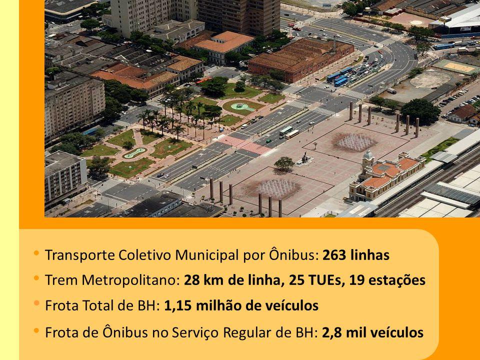 Transporte Coletivo Municipal por Ônibus: 263 linhas