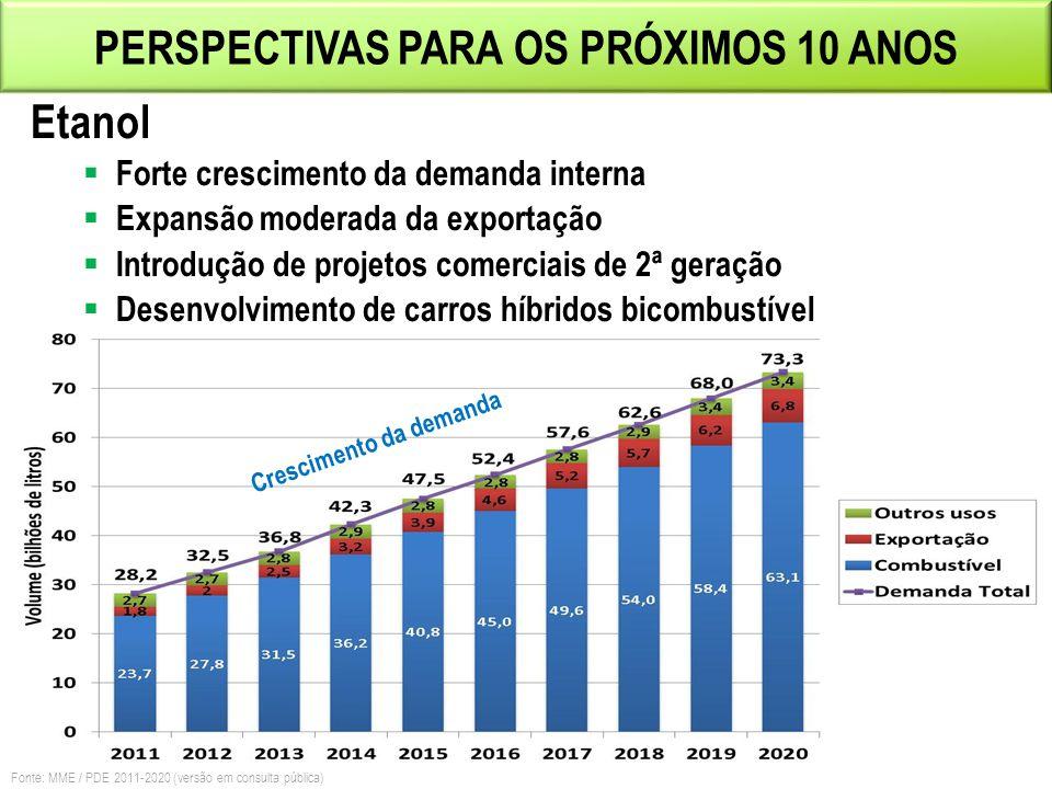 PERSPECTIVAS PARA OS PRÓXIMOS 10 ANOS Crescimento da demanda