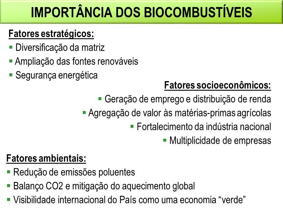 Importância dos biocombustíveis