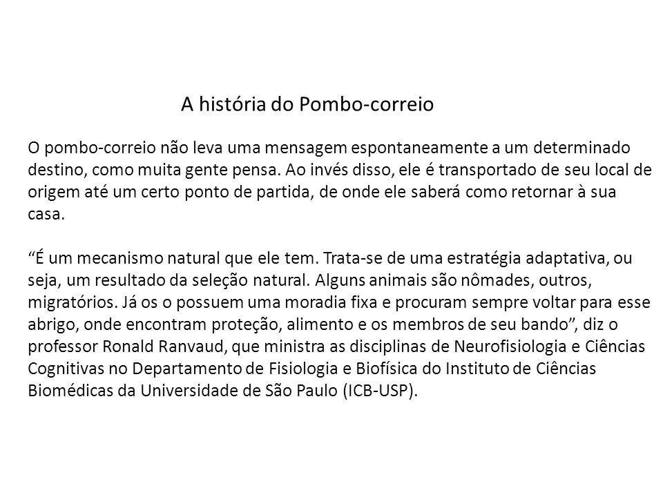 A história do Pombo-correio