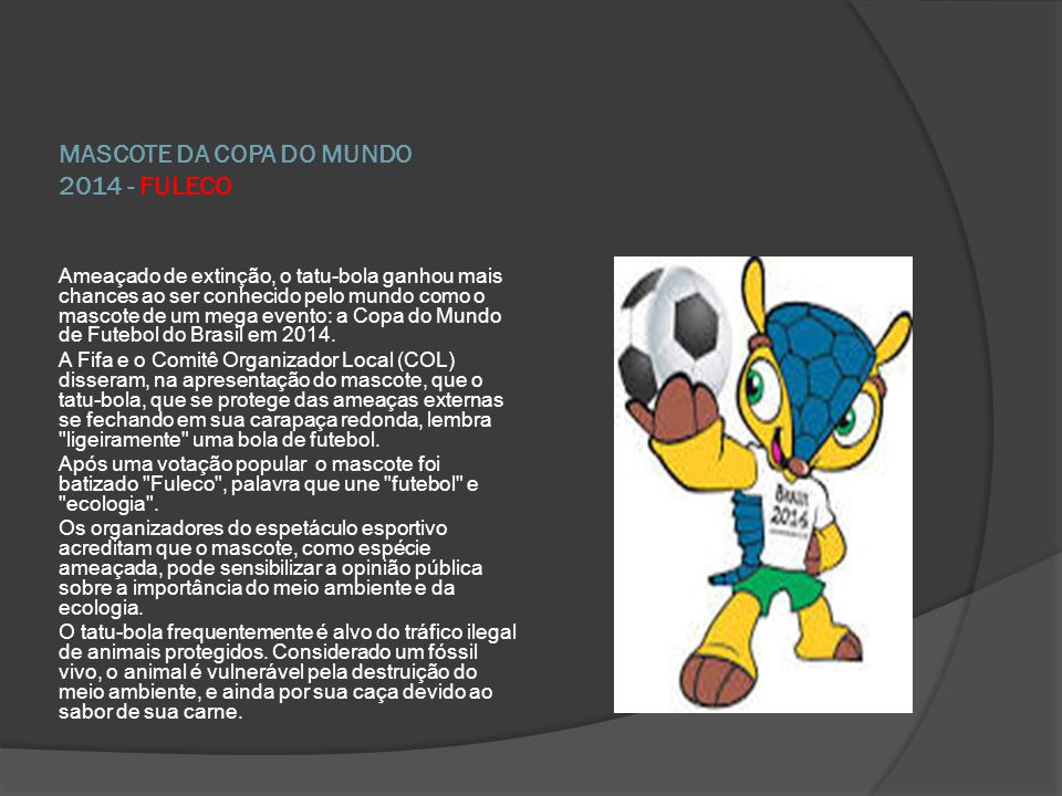 MASCOTE DA COPA DO MUNDO 2014 - FULECO