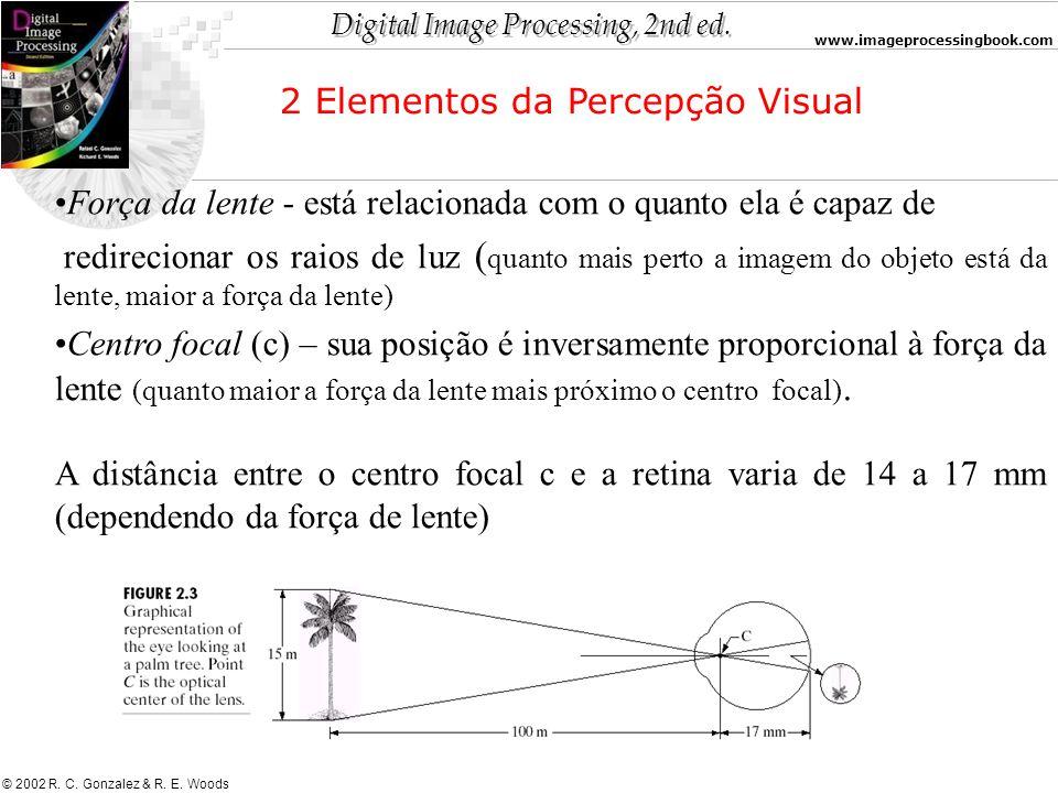 2 Elementos da Percepção Visual