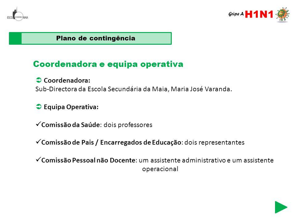 H1N1 Coordenadora e equipa operativa  Coordenadora: