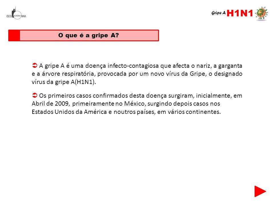 H1N1 Gripe A. O que é a gripe A