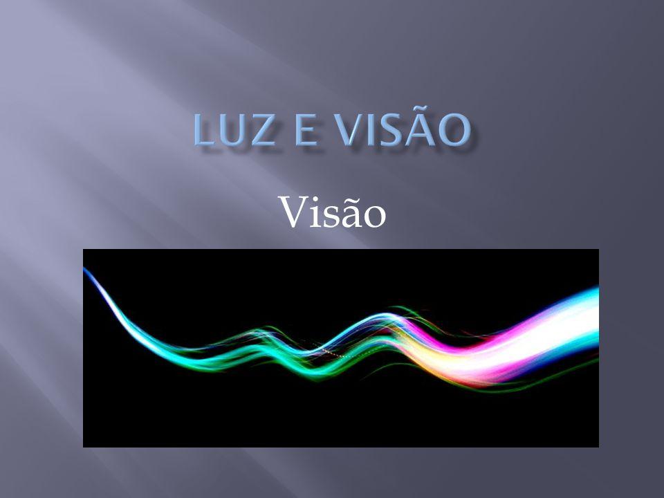 Luz e Visão Visão