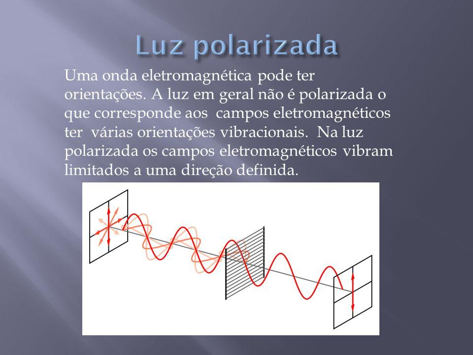 Luz polarizada