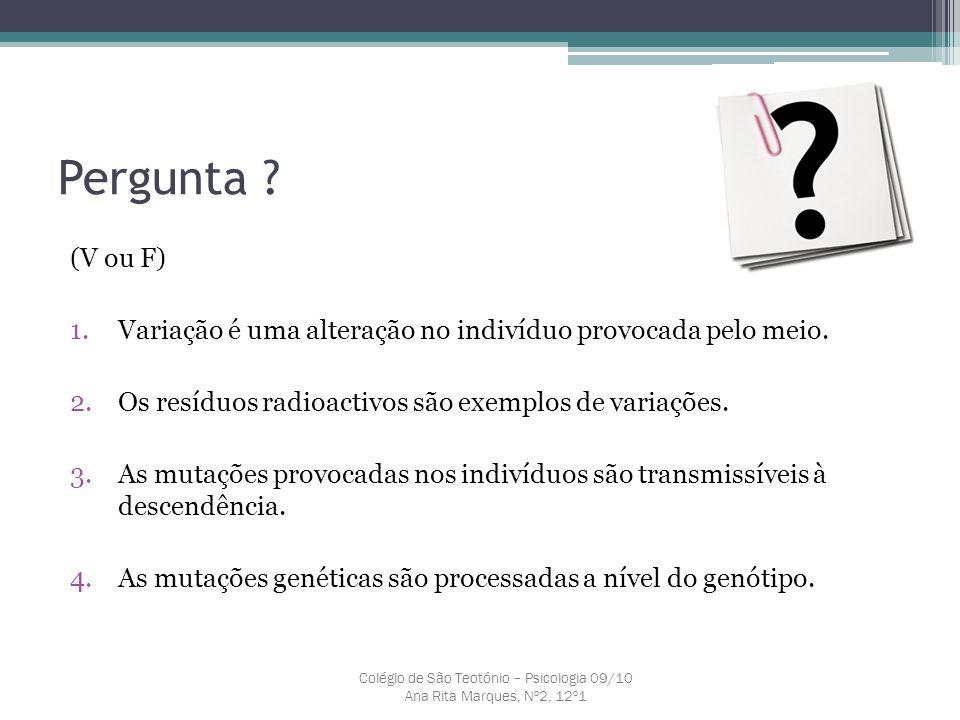 Colégio de São Teotónio – Psicologia 09/10