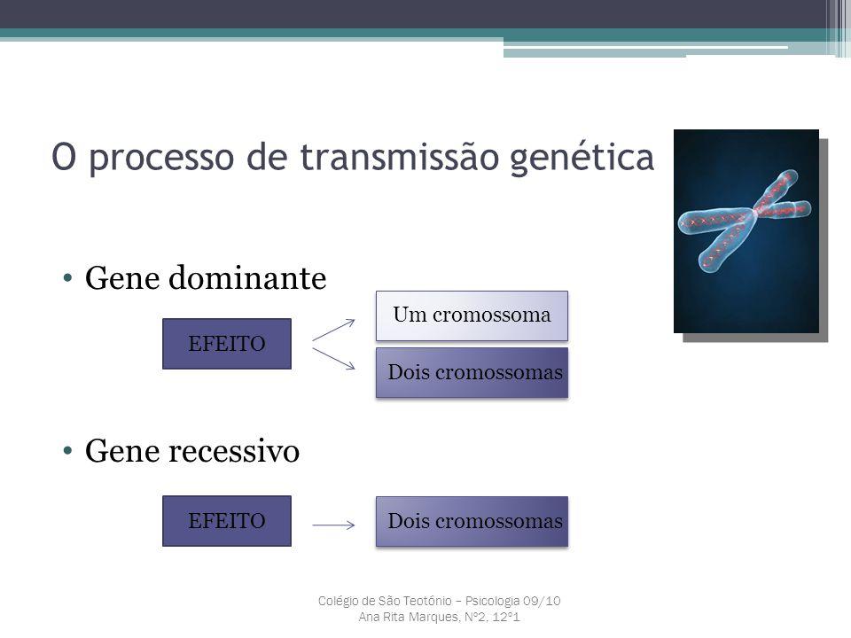 O processo de transmissão genética