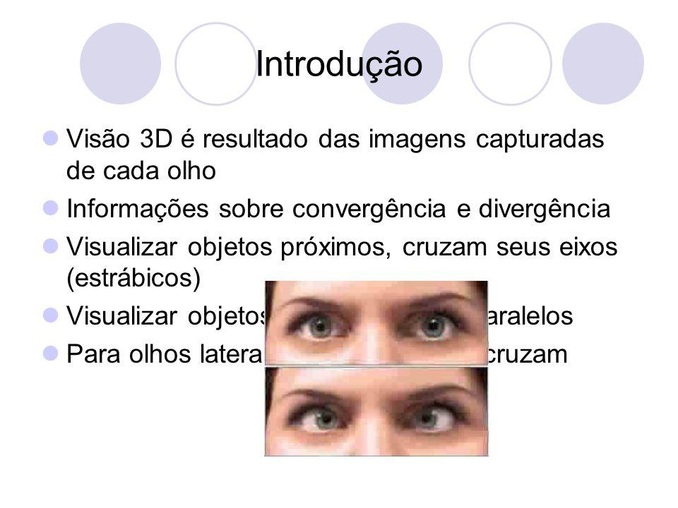 Introdução Visão 3D é resultado das imagens capturadas de cada olho