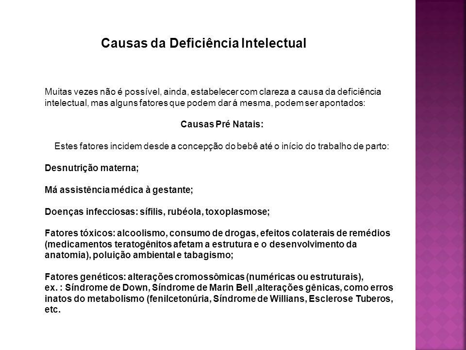 Causas da Deficiência Intelectual