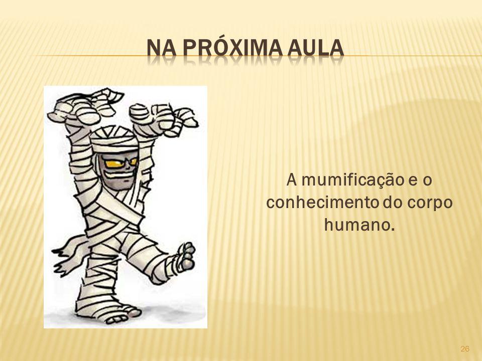 A mumificação e o conhecimento do corpo humano.