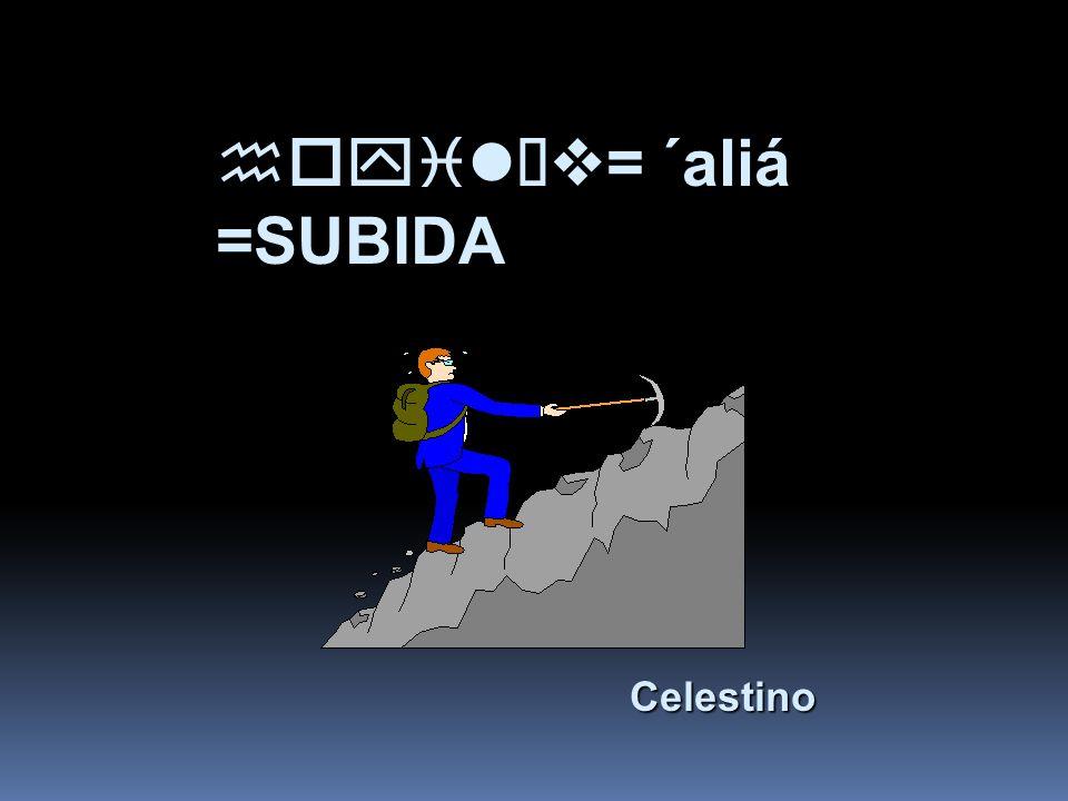 hoyilÏv= ´aliá =SUBIDA