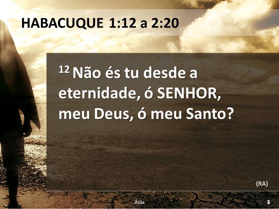 12 Não és tu desde a eternidade, ó SENHOR, meu Deus, ó meu Santo