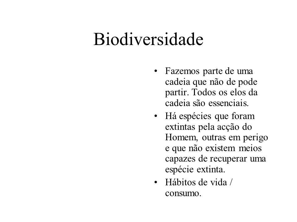 BiodiversidadeFazemos parte de uma cadeia que não de pode partir. Todos os elos da cadeia são essenciais.
