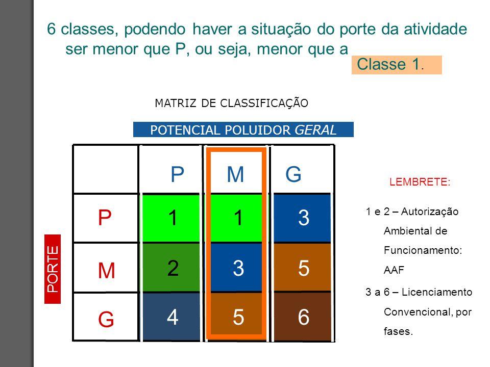 6 classes, podendo haver a situação do porte da atividade ser menor que P, ou seja, menor que a