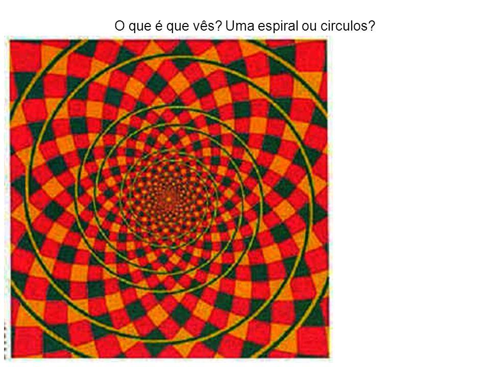 O que é que vês Uma espiral ou circulos