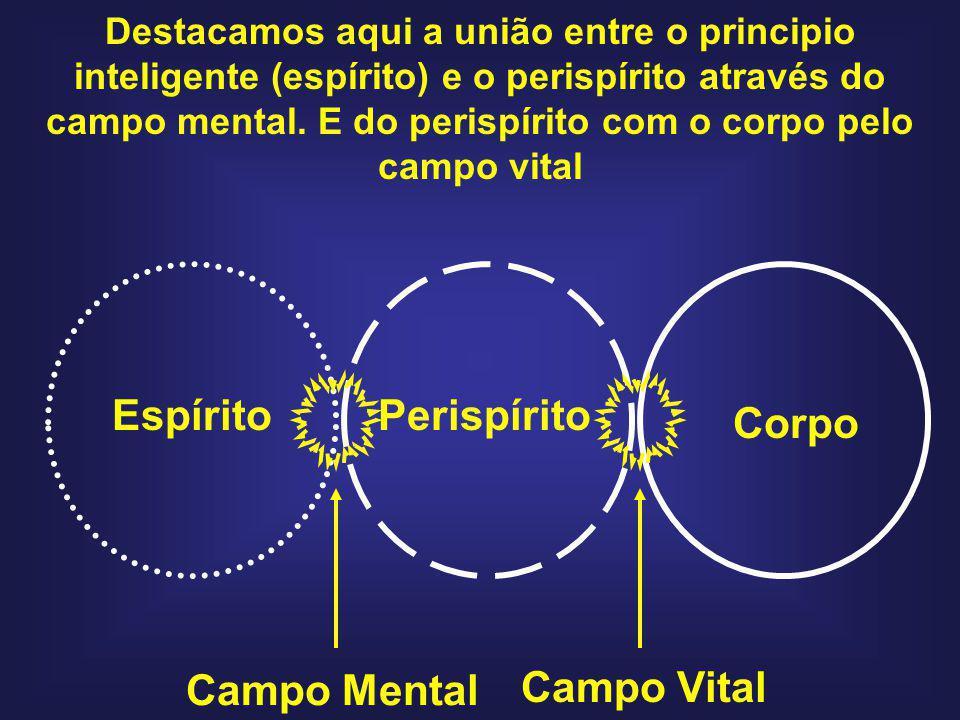 Espírito Perispírito Corpo Campo Mental Campo Vital