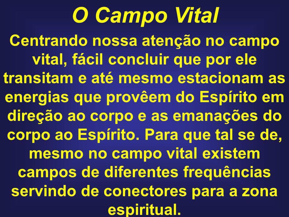 O Campo Vital