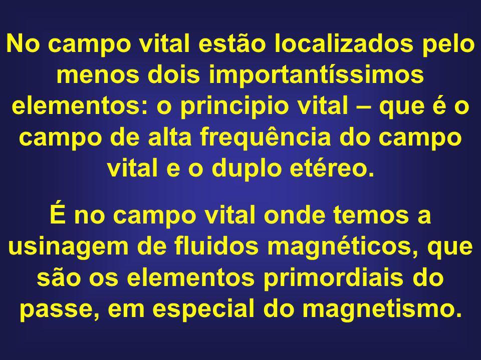 No campo vital estão localizados pelo menos dois importantíssimos elementos: o principio vital – que é o campo de alta frequência do campo vital e o duplo etéreo.