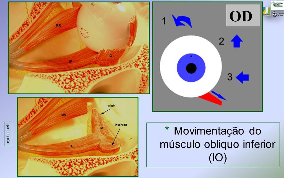 Movimentação do músculo obliquo inferior (IO)