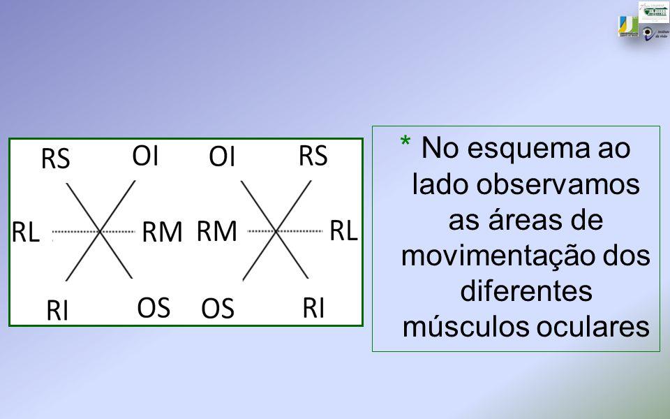No esquema ao lado observamos as áreas de movimentação dos diferentes músculos oculares