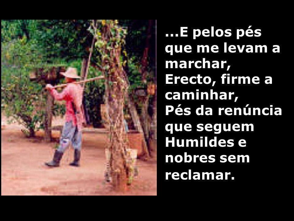 ...E pelos pés que me levam a marchar, Erecto, firme a caminhar, Pés da renúncia que seguem Humildes e nobres sem reclamar.