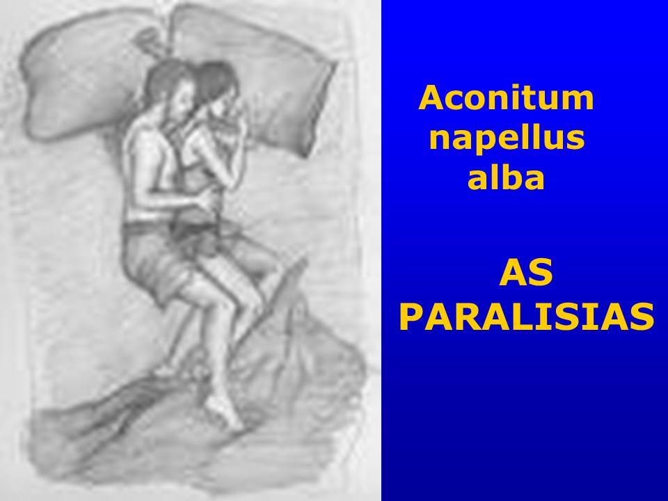 Aconitum napellus alba