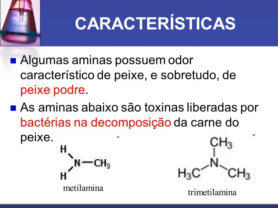 CARACTERÍSTICAS Algumas aminas possuem odor característico de peixe, e sobretudo, de peixe podre.