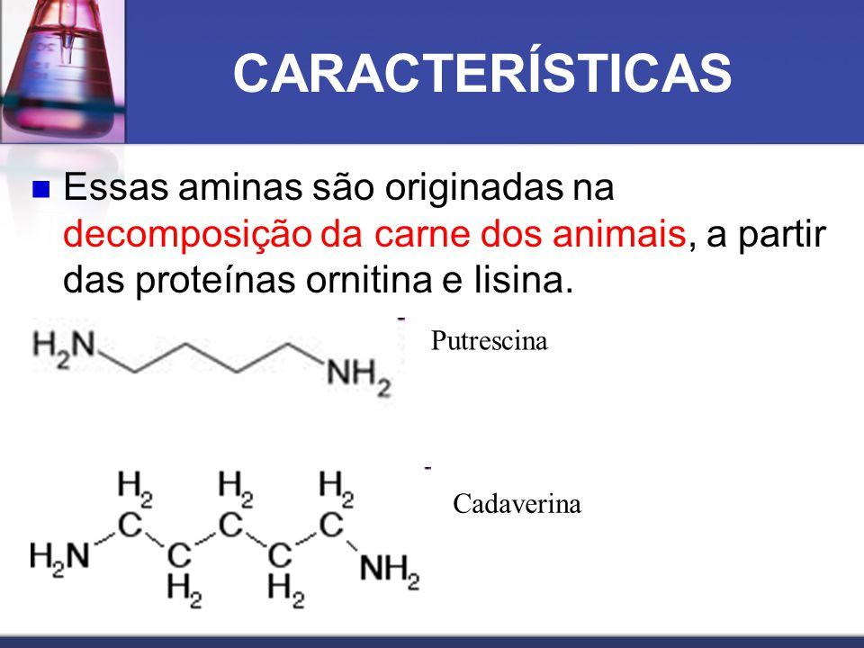 CARACTERÍSTICAS Essas aminas são originadas na decomposição da carne dos animais, a partir das proteínas ornitina e lisina.