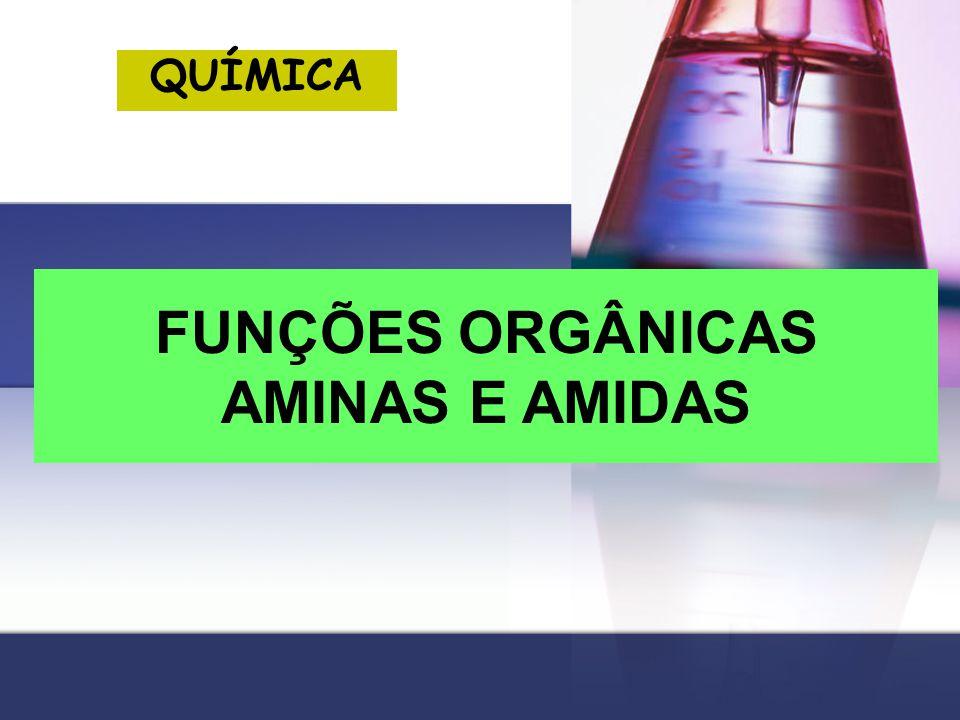 FUNÇÕES ORGÂNICAS AMINAS E AMIDAS