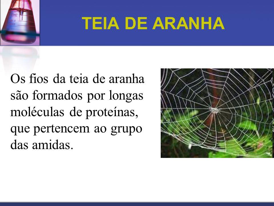 TEIA DE ARANHA Os fios da teia de aranha são formados por longas moléculas de proteínas, que pertencem ao grupo das amidas.
