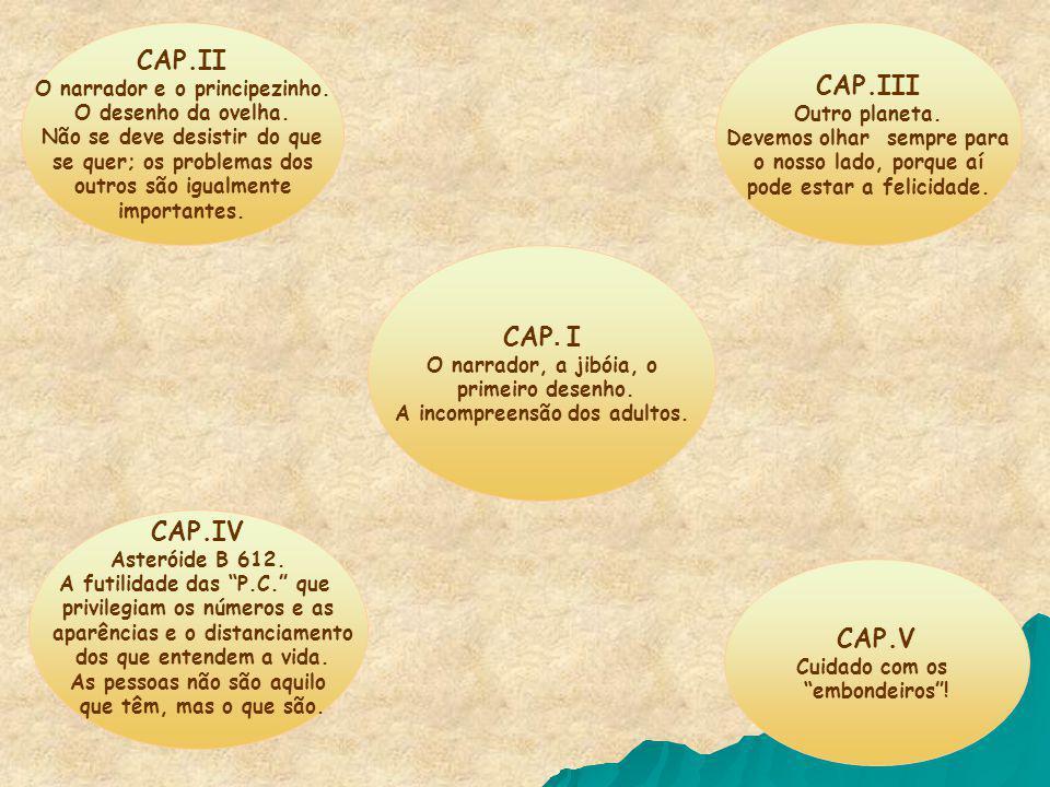 CAP.II CAP.III CAP. I CAP.IV CAP.V O narrador e o principezinho.
