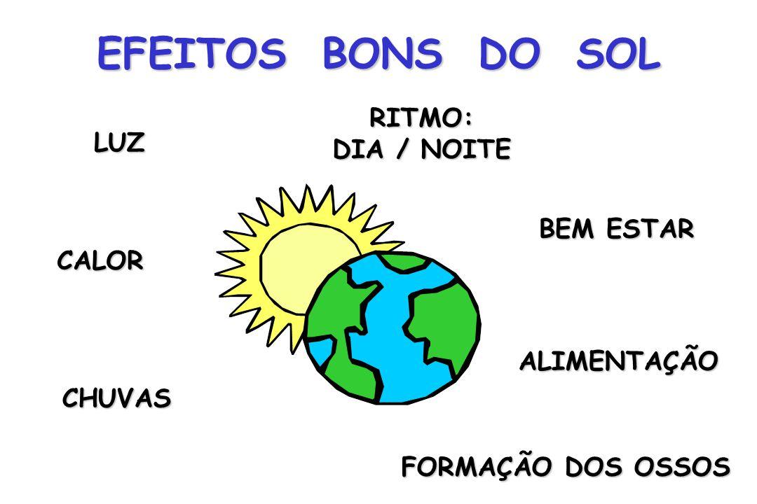 EFEITOS BONS DO SOL RITMO: DIA / NOITE LUZ BEM ESTAR CALOR ALIMENTAÇÃO