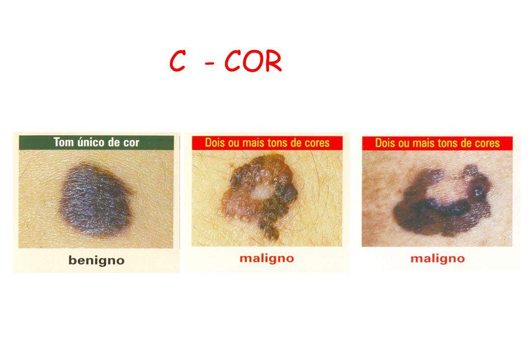 C - COR