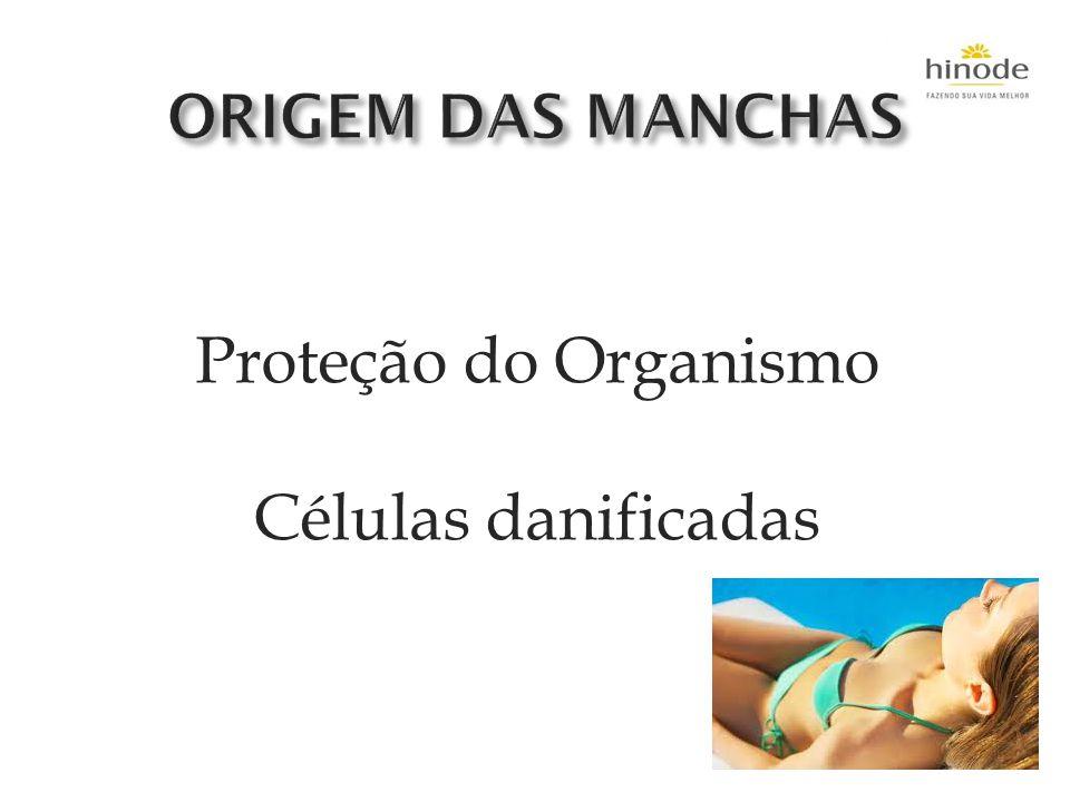 ORIGEM DAS MANCHAS Proteção do Organismo Células danificadas