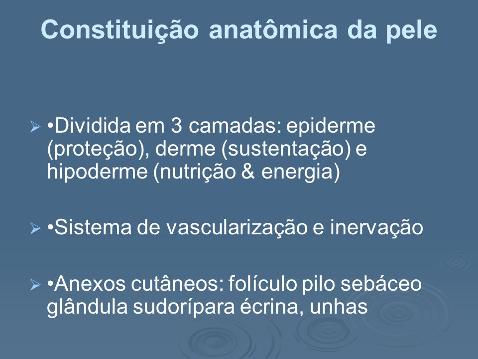 Constituição anatômica da pele
