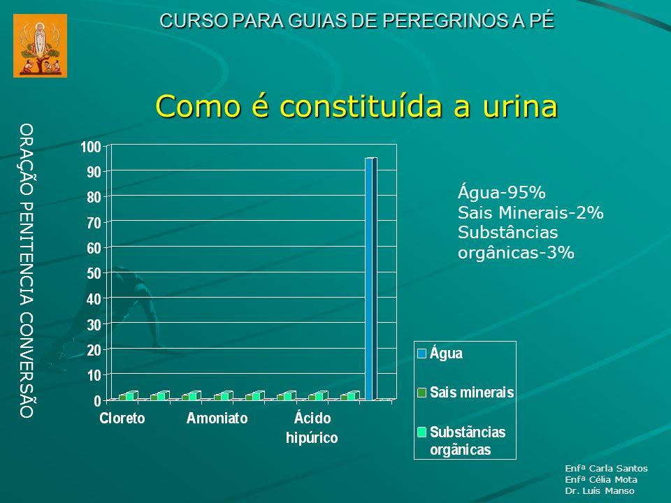 CURSO PARA GUIAS DE PEREGRINOS A PÉ