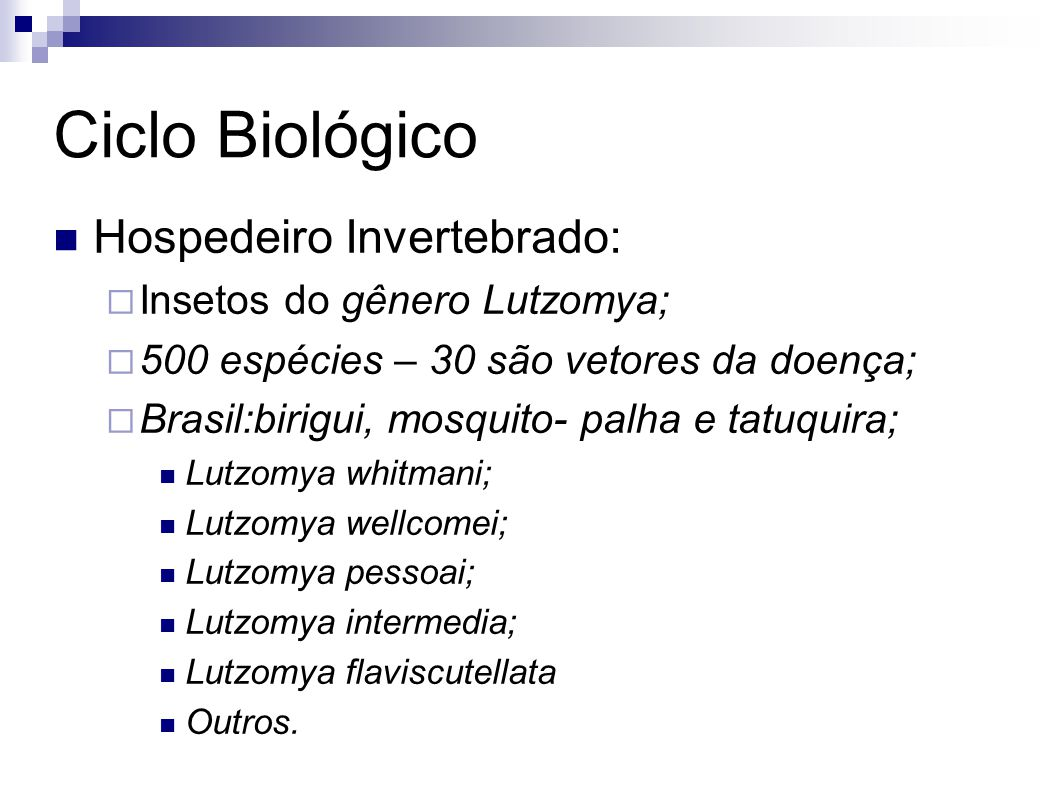 Ciclo Biológico Hospedeiro Invertebrado: Insetos do gênero Lutzomya;