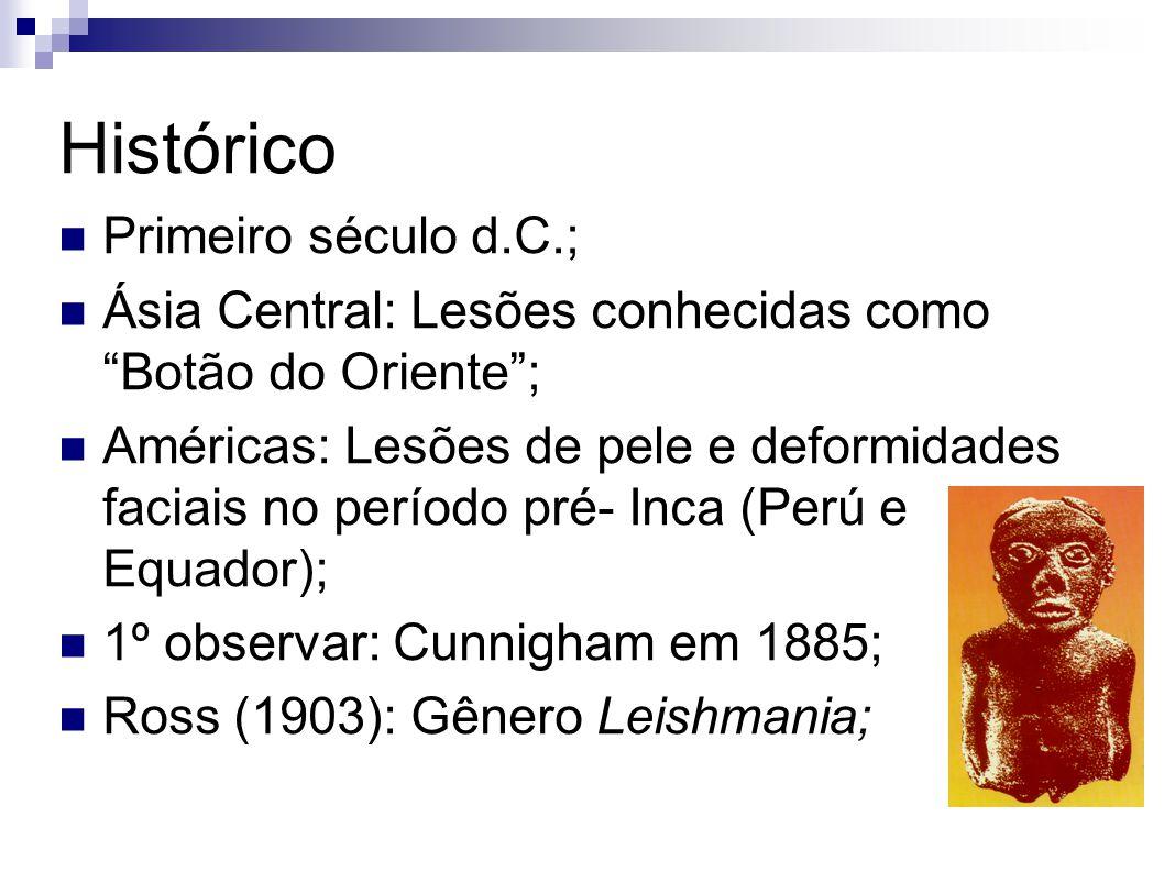 Histórico Primeiro século d.C.;
