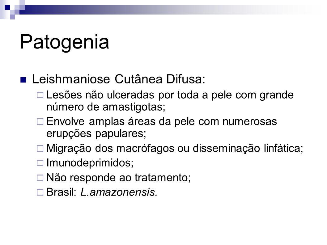 Patogenia Leishmaniose Cutânea Difusa:
