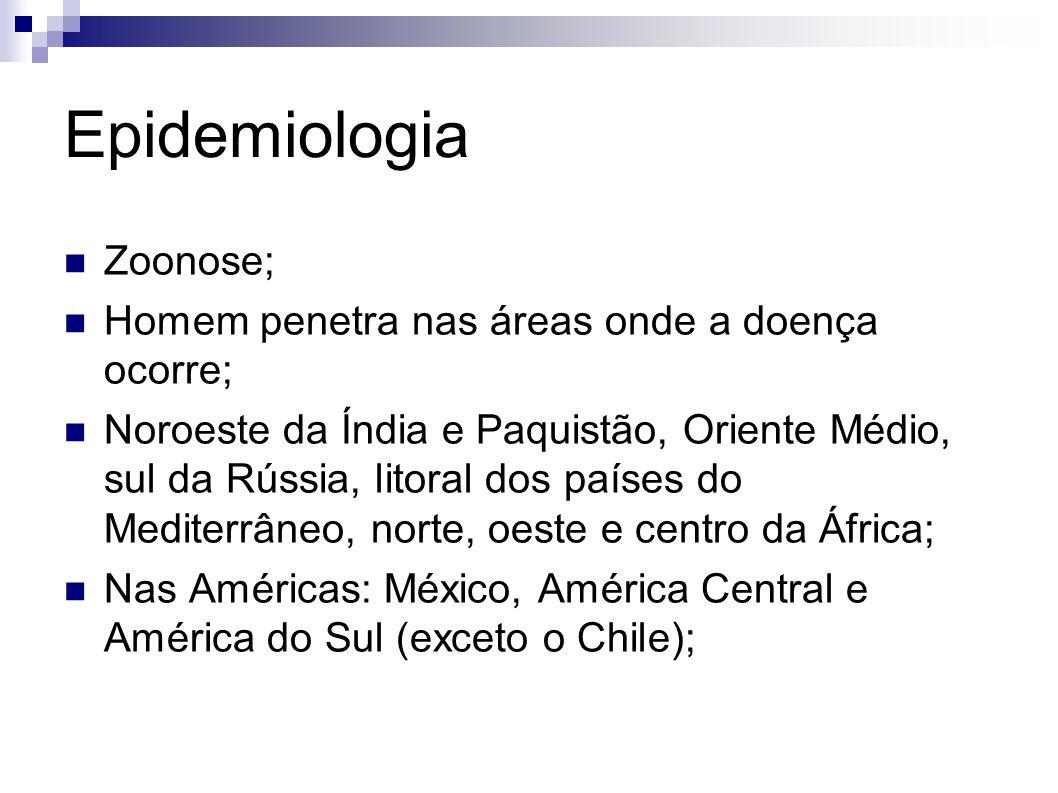 Epidemiologia Zoonose; Homem penetra nas áreas onde a doença ocorre;